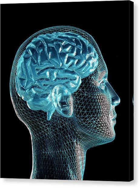 Brain Canvas Print by Pasieka