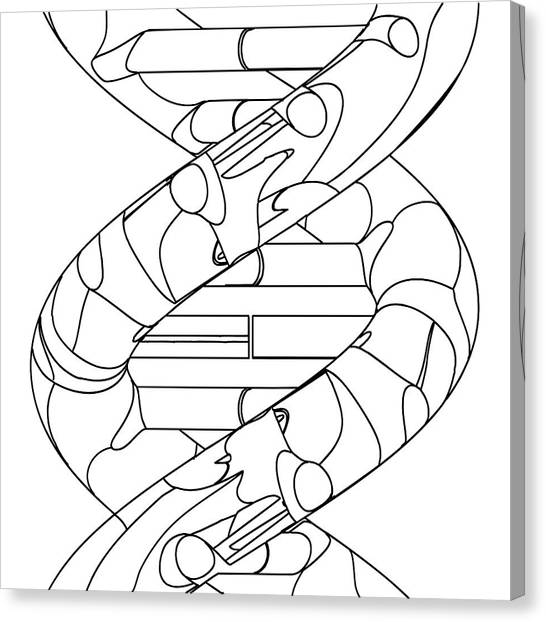 Genetic Code Canvas Prints Page 3 Of 22