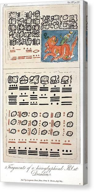 Colombian Canvas Print - 1814 Humboldt Mayan Heiroglyphics by Paul D Stewart