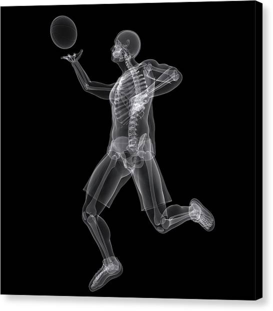 Basketball Player Canvas Print by Sciepro/science Photo Library