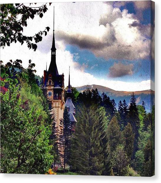 Soccer Players Canvas Print - Peles Castle, Romania