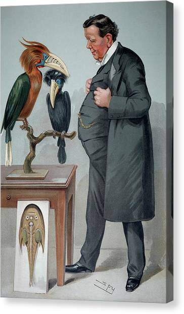 Hornbill Canvas Print - 1905 Edwin Ray Lankester Zoologist by Paul D Stewart