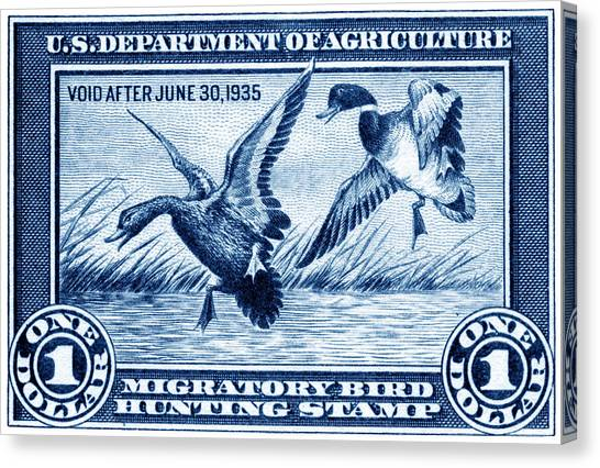 1934 American Bird Hunting Stamp Canvas Print