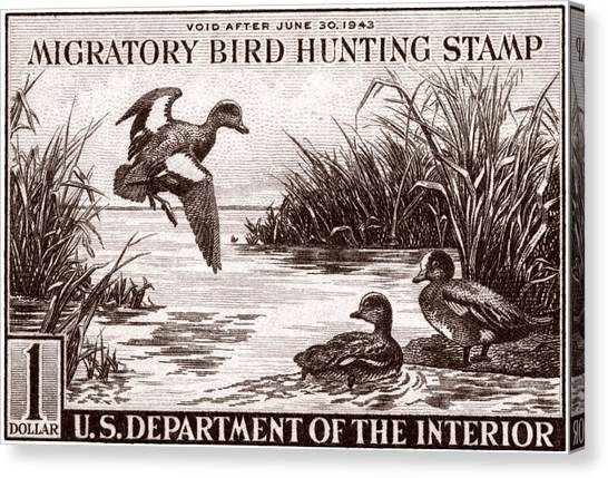 1942 American Bird Hunting Stamp Canvas Print