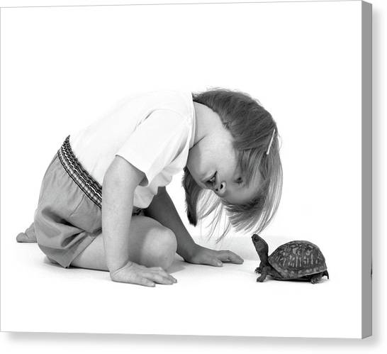 Box Turtles Canvas Print - 1960s Girl Looking At Box Turtle by Vintage Images