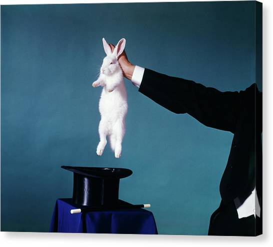 Hat Trick Canvas Print - 1960s Hand Of Magician Pulling White by Vintage Images