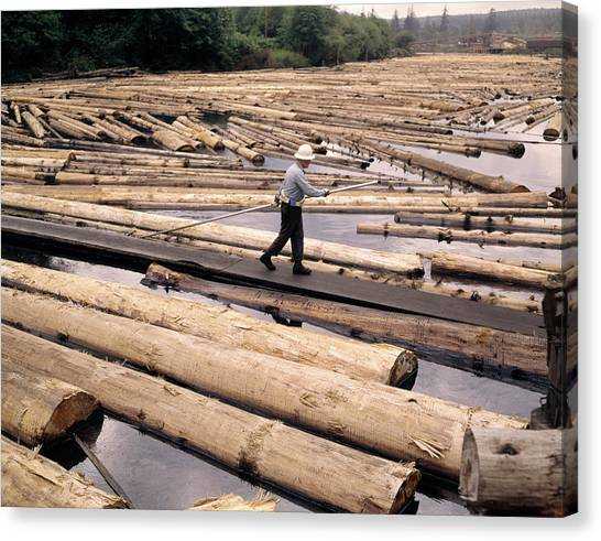 Hard Hat Canvas Print - 1970s Lumber Yard Mill Pond Worker by Vintage Images