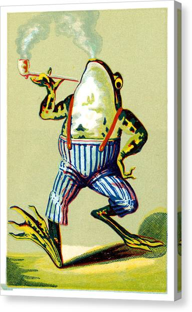 19th C. Pipe Smoking Frog Canvas Print