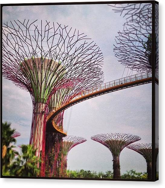 Grove Canvas Print - Supertrees And Skyway by Jeff Leong