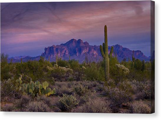 A Beautiful Desert Evening  Canvas Print