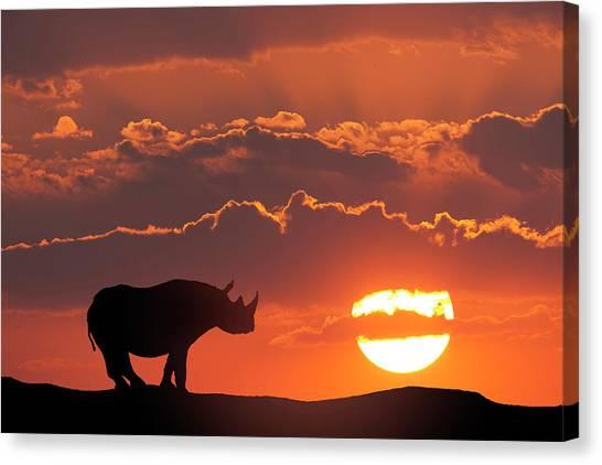 Masai Mara Canvas Print - Africa, Kenya, Masai Mara Game Reserve by Jaynes Gallery