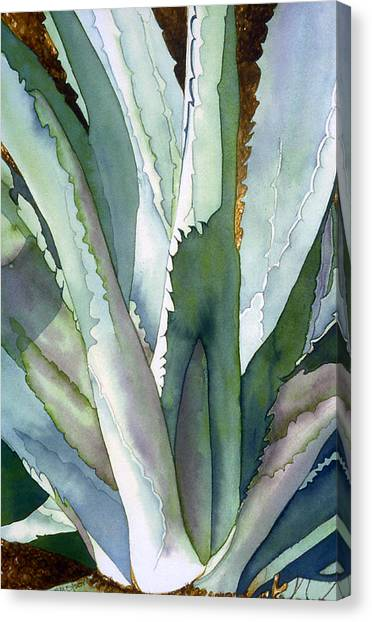 Agave 1 Canvas Print by Eunice Olson