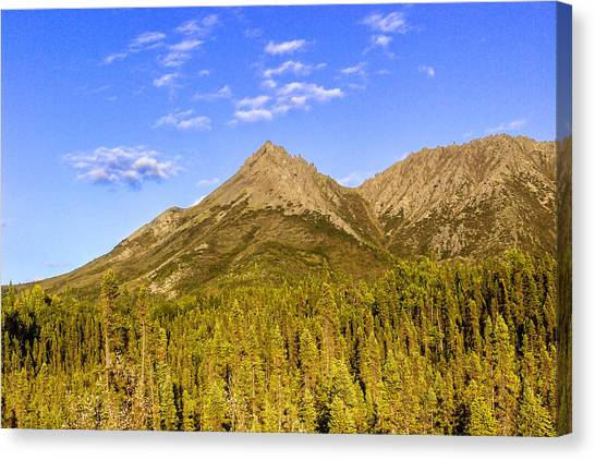 Cloud Forests Canvas Print - Alaska Mountains by Chad Dutson