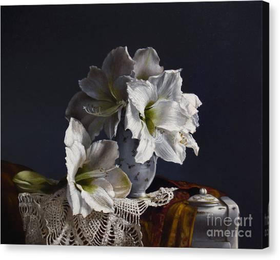 Amaryllis Canvas Print - Amaryllis  by Lawrence Preston
