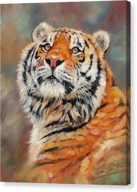 Siberian Canvas Print - Amur Tiger Painting by David Stribbling