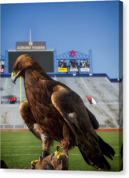 Sec Canvas Print - Auburn War Eagle by Mountain Dreams