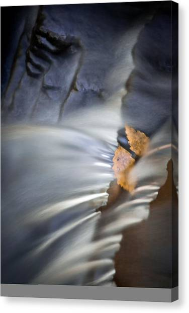 Autumn Color Caught In Time Canvas Print