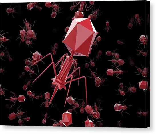 Bacteriophage T4 Viruses Canvas Print by Maurizio De Angelis