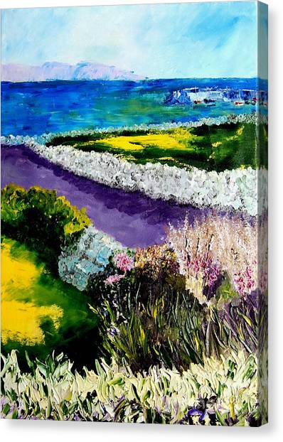 Barna Galway Bay Ireland Canvas Print