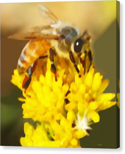Bee On A Yellow Flower Canvas Print