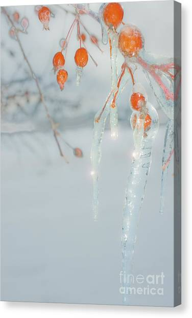 Before The Thaw Canvas Print