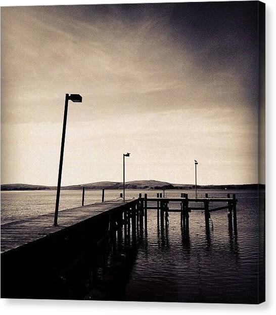 White Canvas Print - 2 Bird Dock by CML Brown