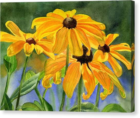 Susan Canvas Print - Black Eyed Susans by Sharon Freeman