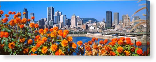 67 Canvas Print - Blooming Flowers With City Skyline by Panoramic Images