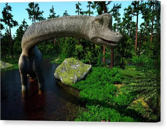 Brachiosaurus Canvas Print - Brachiosaurus by Roger Harris