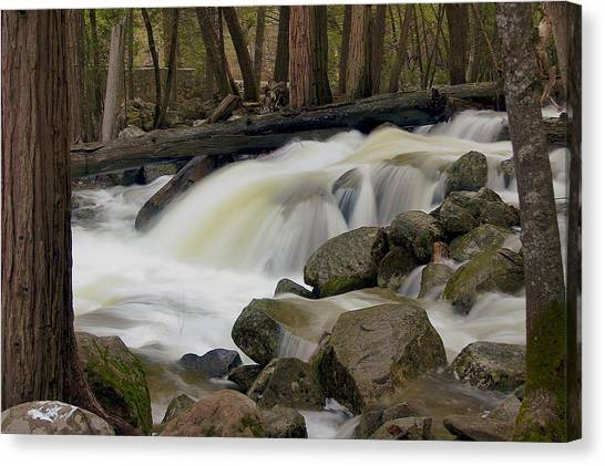 Bridalveil Creek Canvas Print