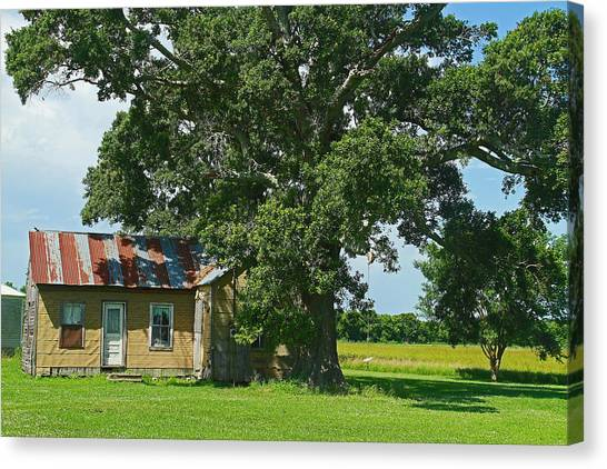 Cajun Home Canvas Print by Ronald Olivier