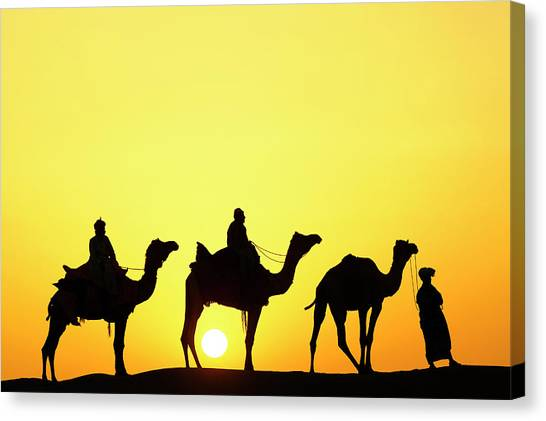Thar Desert Canvas Print - Camels And Camel Driver Silhouetted by Adam Jones