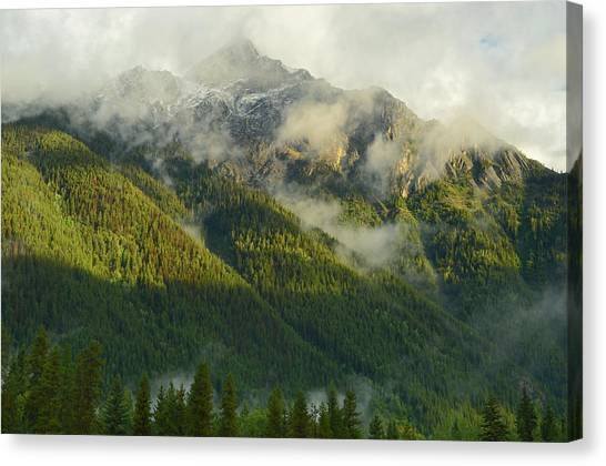 Cloud Forests Canvas Print - Canada, British Columbia, Mt by Jaynes Gallery