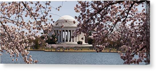 Jefferson Memorial Canvas Print - Cherry Blossom Trees In The Tidal Basin by Panoramic Images