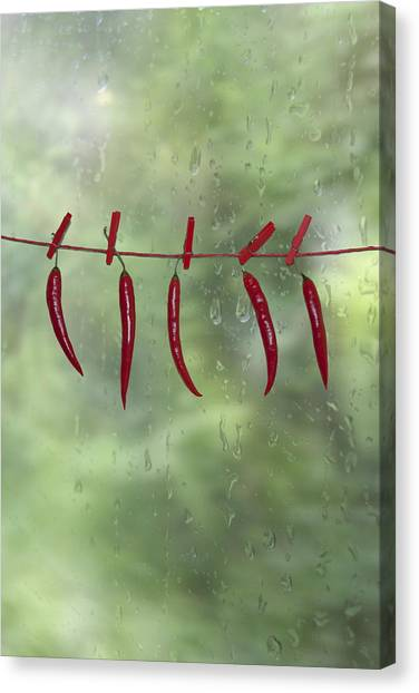 Kitchen Window Canvas Print - Chillies by Joana Kruse