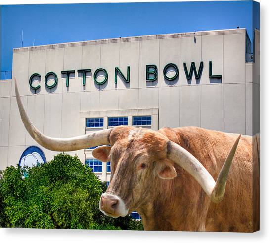 Gridiron Canvas Print - Cotton Bowl by David and Carol Kelly
