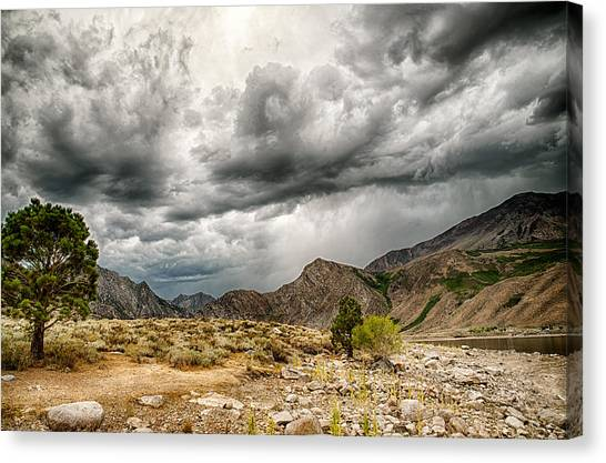 Dark Skies At Grant Lake Canvas Print