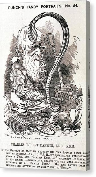 Atheism Canvas Print - Darwin Caricature by George Bernard/science Photo Library