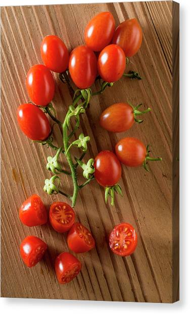 Cherry Tomatoes Canvas Print - Datterino Tomatoes by Aberration Films Ltd