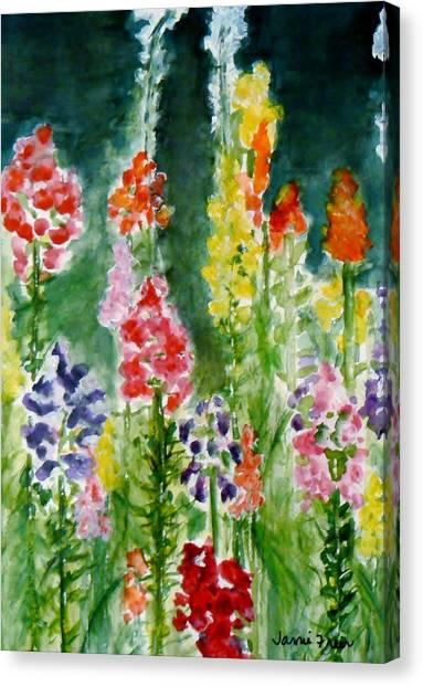 Donna's Snaps Canvas Print