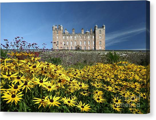 Drumlanrig Castle Canvas Print by Maria Gaellman