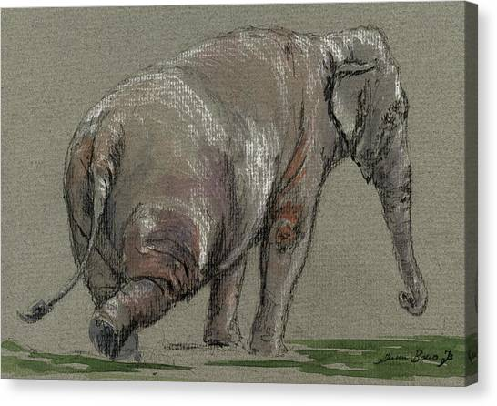 Ivory Canvas Print - Elephant Indian by Juan  Bosco