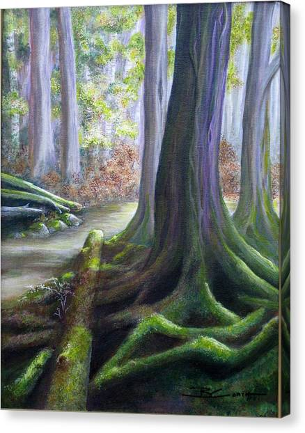 Mossy Forest Canvas Print - Enchanting Forest by Birgit Coath - AFCA