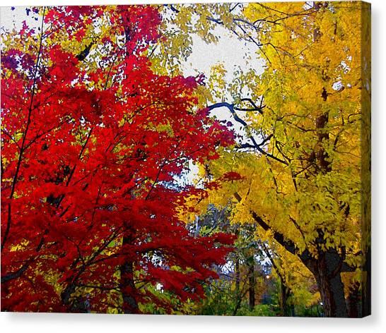Autumn Leaves Canvas Print - Fall Leaves by Ariane Moshayedi