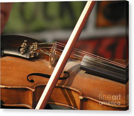 Fiddle Time Canvas Print