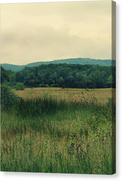 Canvas Print featuring the photograph Field Day by Candice Trimble