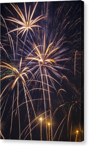 Pyrotechnic Canvas Print - Fireworks Celebration  by Garry Gay