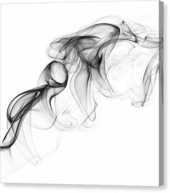 Fluidity No. 1 Canvas Print