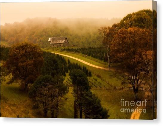 Foggy Autumn Country Road Canvas Print