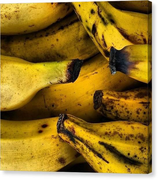Fresh Canvas Print - Bananas by Jason Michael Roust